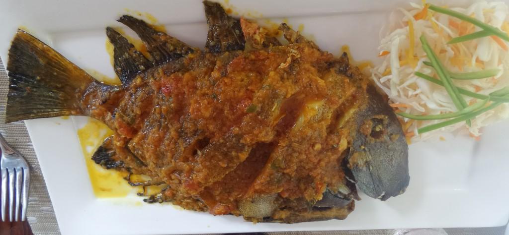seychelles-amanda-noventa-6