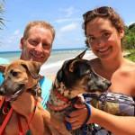 O problema dos cachorros em Koh Lanta, Tailândia