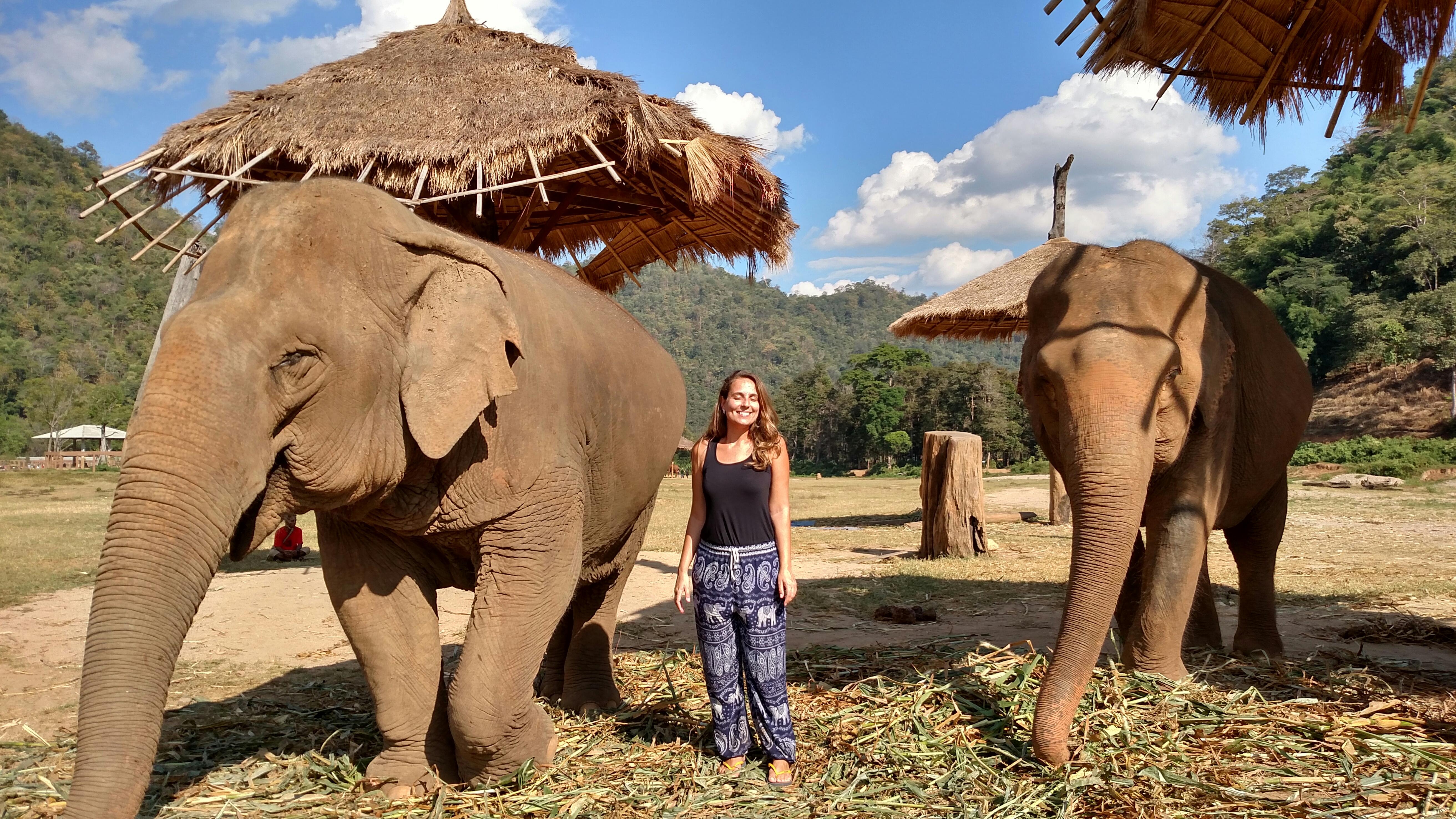 Como fazer o passeio de elefante na Tailândia sem crueldade