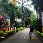 O que fazer em Medellín na Colômbia