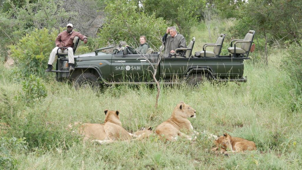 Safári Africa do Sul Amanda Viaja