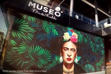 museu frida kahlo amanda viaja