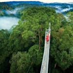 O que fazer em Monteverde na Costa Rica