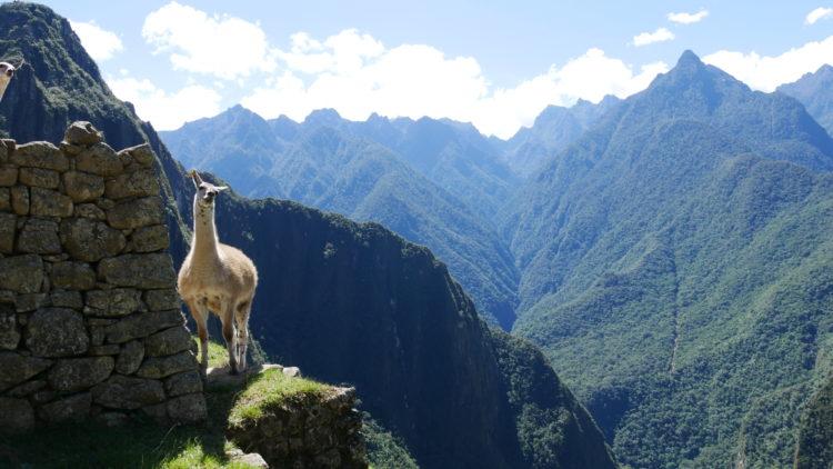 5 erros que cometi na minha viagem a Machu Picchu