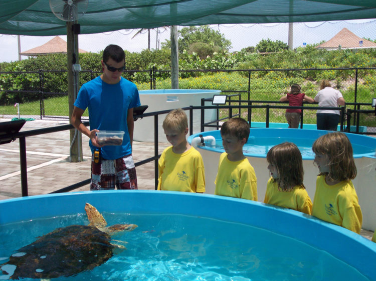 32 atrações para crianças em Palm Beach na Flórida